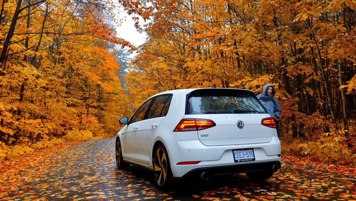 Cuidar el coche otoño