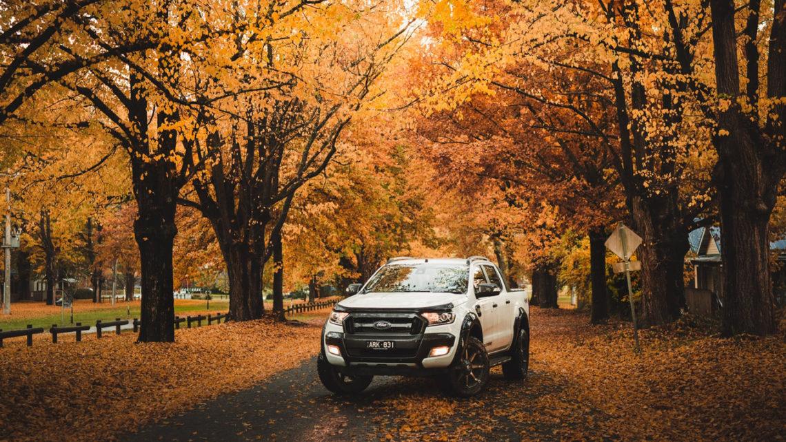 Mantenimiento coche en otoño
