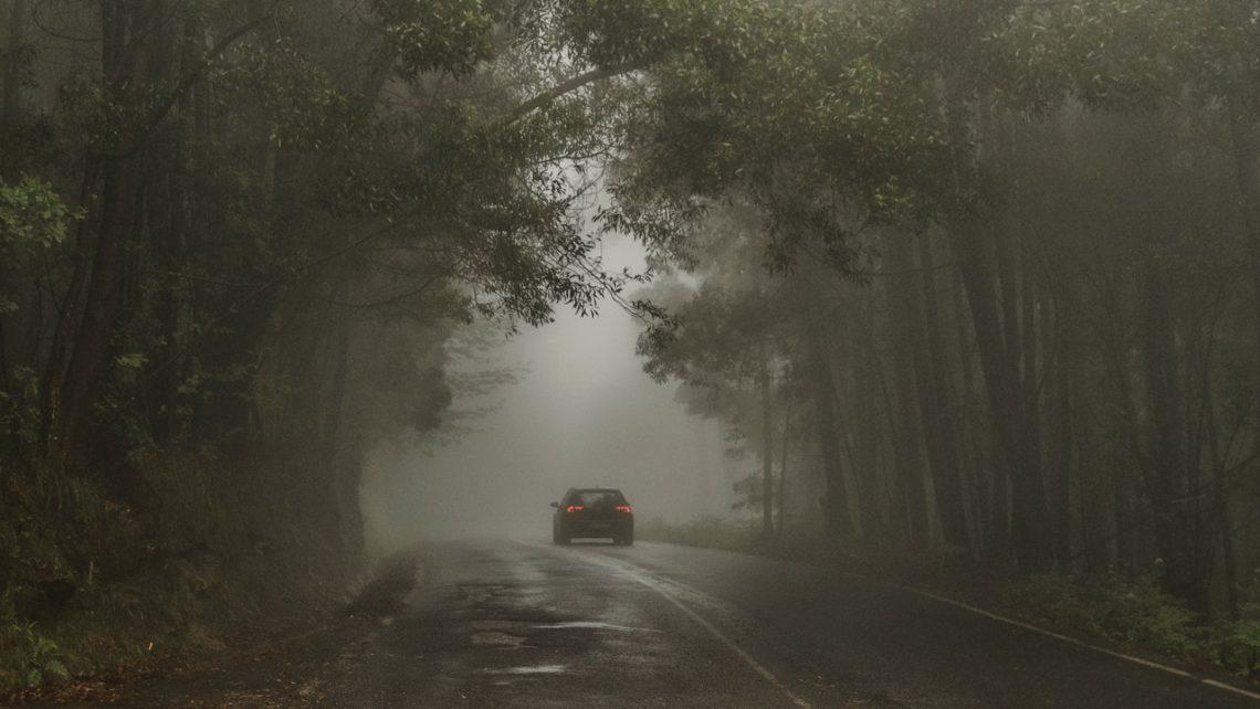 Conducir en otoño 3